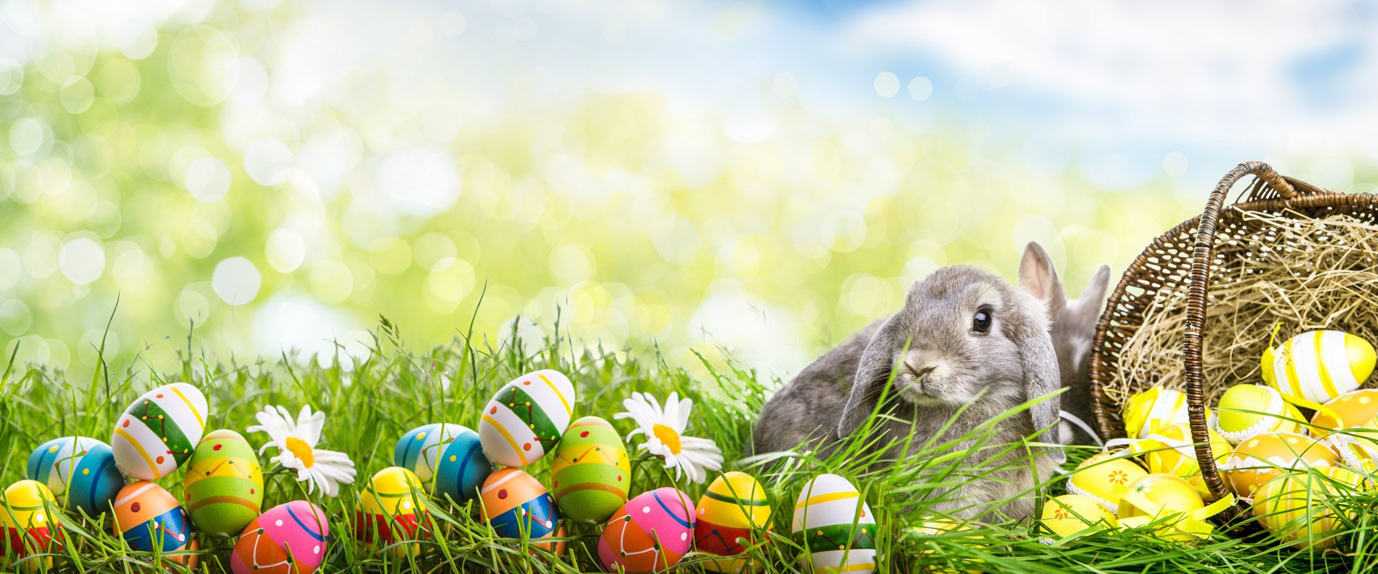 How to make Easter healthier for your children this year!